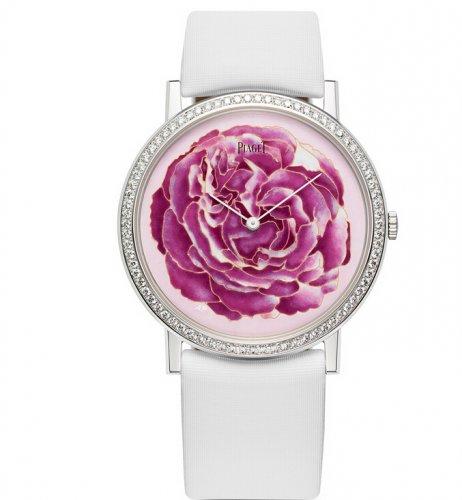 伯爵玫瑰主题,展现女性特质敏锐观察力